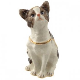 American Shorthair Curious Cat Jewelry Box